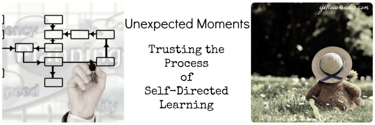 Pictures: Hand drawing flow chart, Toy bear in hat on grass. Text: Unexpected Moments, Trusting the Process of Self-Directed Learning