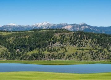 Alpine Greens 725 Header