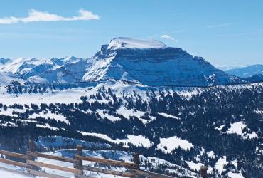 Winter's breathtaking beauty.