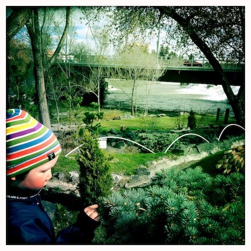 Finn by River