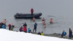"""On our last morning, a surprising number of folk took the """"polar plunge""""!"""