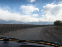 But this detour did take us past The Vines of Mendoza - a great bodega to visit