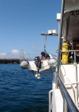 One of the tenders being put away at the end of a good day's diving
