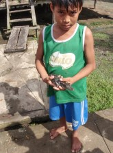 This lad has some young caimans as pets