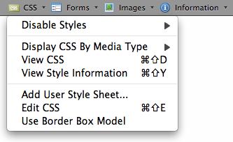Top-5-Firefox-Add-Ons-Buat- Web- Designers-2