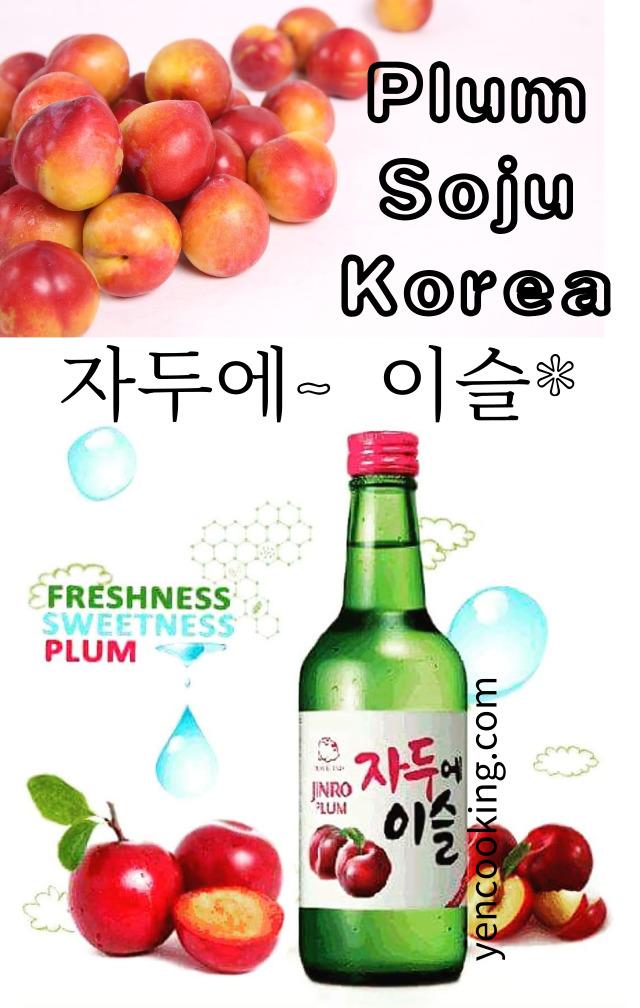 plum-korea-wine-korean-spirits-mocktail-cocktail-mixer-juice-alcohol-soju-korea-ciders-noju-dew-iseul-chamisul