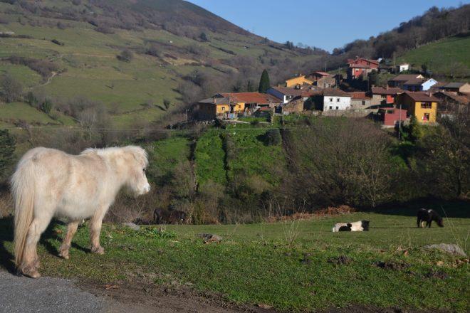 Pueblo de Pedroveya