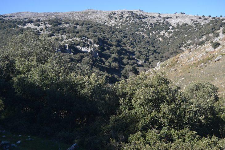Vistas del Cañón del río Bailón