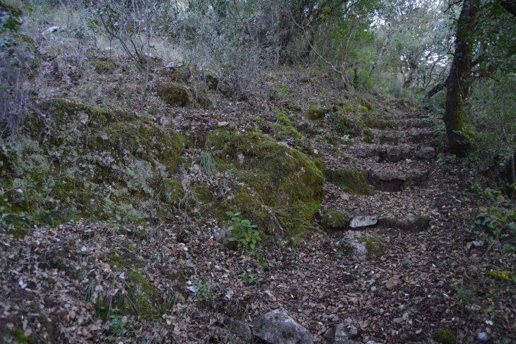 Ruta del Mirador de la Cabrera y la Dehesa Vargas