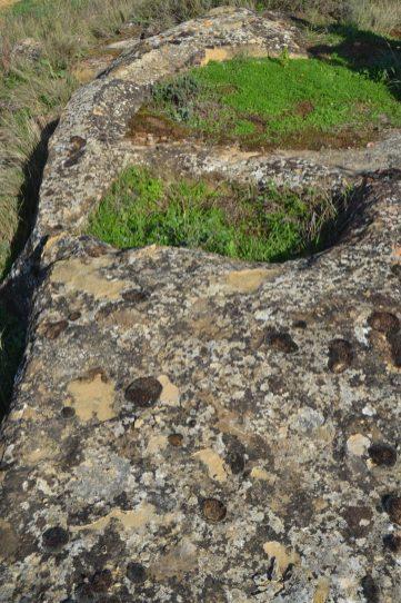 Restos prehistóricos