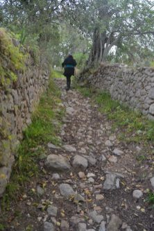 Paseo por El Barrocal