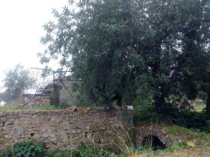 Molino y puente de piedra