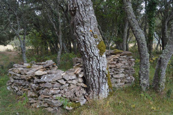 Antiguas cabañas