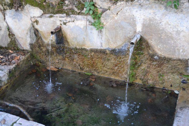 Fuente del Piojo