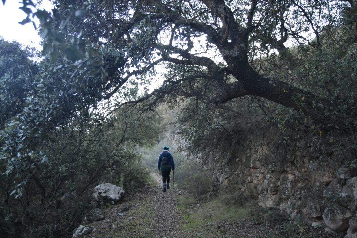 Ruta por el Tajo de las Llanás