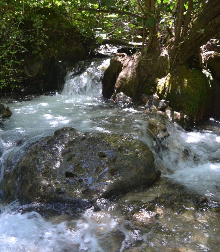 Saltos de agua en el río Majaceite