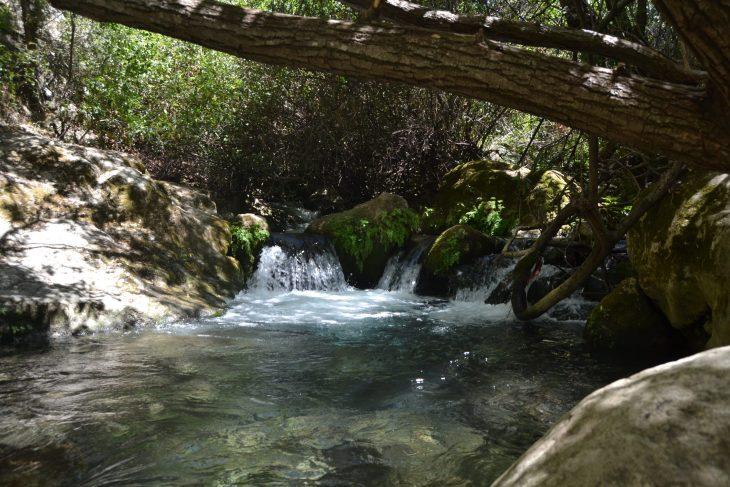 Cascadas y Poza en el río Majaceite