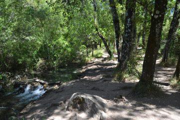 Explanada arbolada junto al Río Majaceite