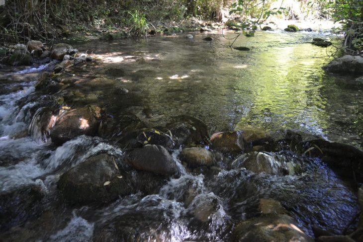 Caminando por el río Majaceite