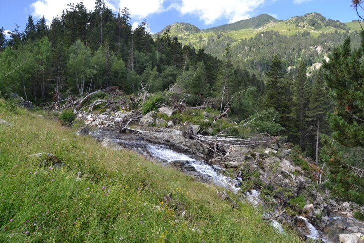 Camino junto a la cascada