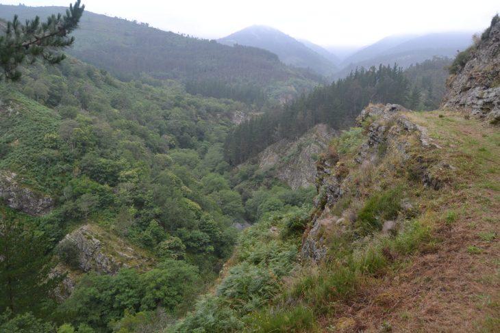 Río Esva desde el camino