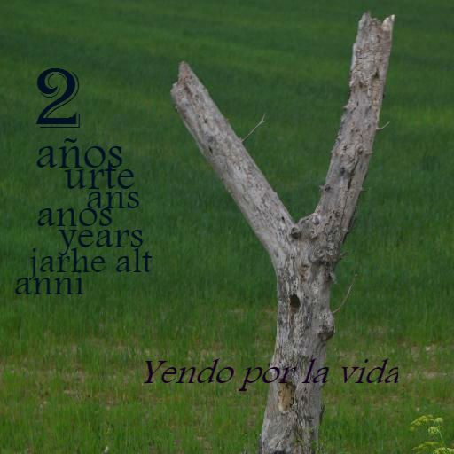 2º Aniversario del Blog Yendo por la vida
