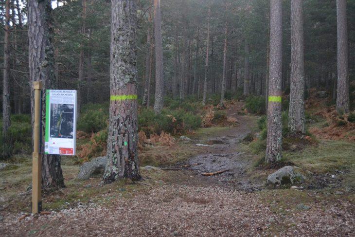 Inicio de la Senda del Bosque