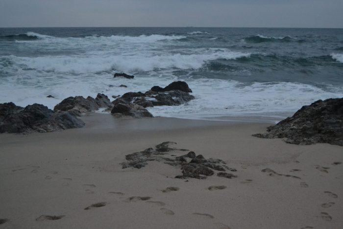 Praia do Vila Chã