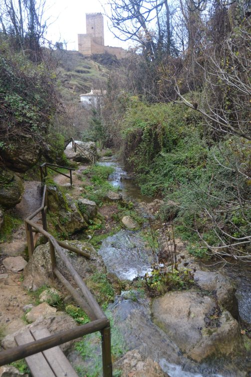 Senda Río Cerezuelo y Castillo de la Yedra