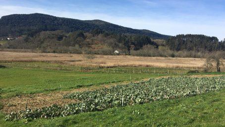 Marismas y tierras de labranza
