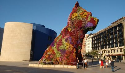 Puppy en Bilbao