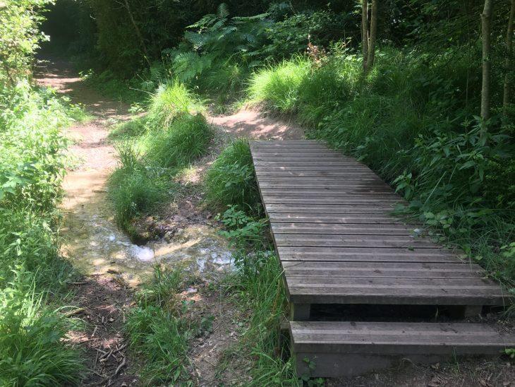 Ruta del agua de Berganzo