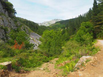 Ruta de las Cuevas de Baltzola en Dima