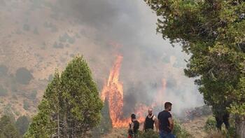 Afşin 'de 5 hektar ormanlık alan yandı