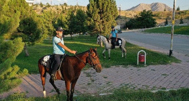 Kahramanmaraş'ta atlı zabıtalar görevde