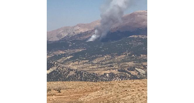 Kahramanmaraş'taki orman yangınında 2 hektarlık alan zarar gördü