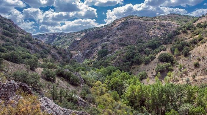 Kıbrıs Vadisinin Doğal SİT Alanı statüsünün düşürülmesi yargıya taşındı