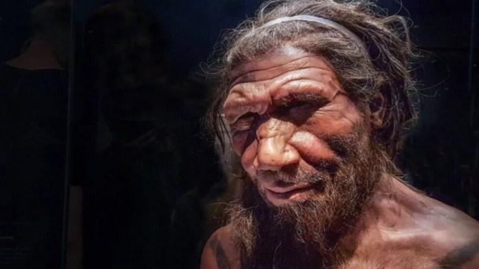 Neandertalleri manyetik kutup değişimleri mi yok etti?