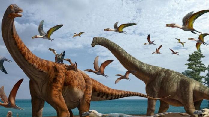 Çin'de 2 yeni dinozor türü keşfedildi