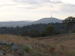 The Telsta Tower on top of Black Mountain from the top of Red Hill.