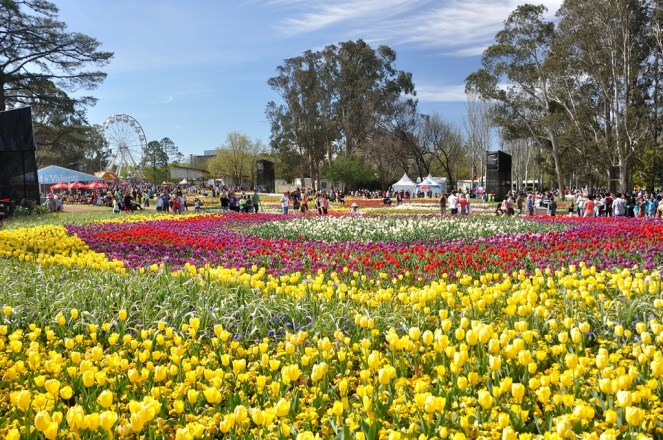 Grand view of Floriade