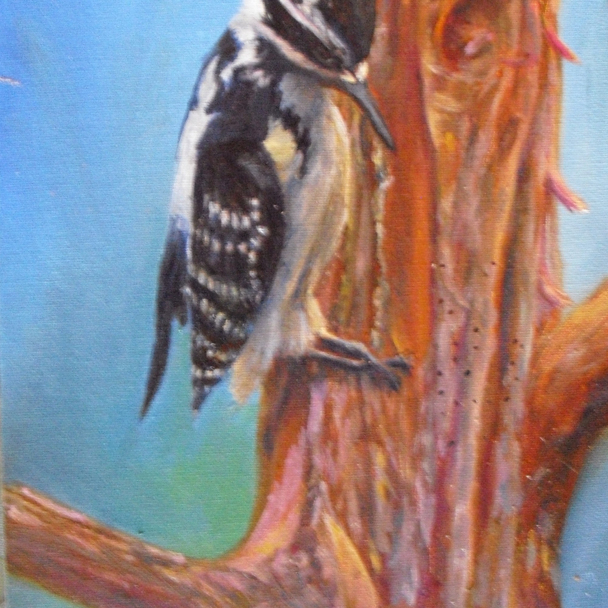 oil painting of a hairy woodpecker