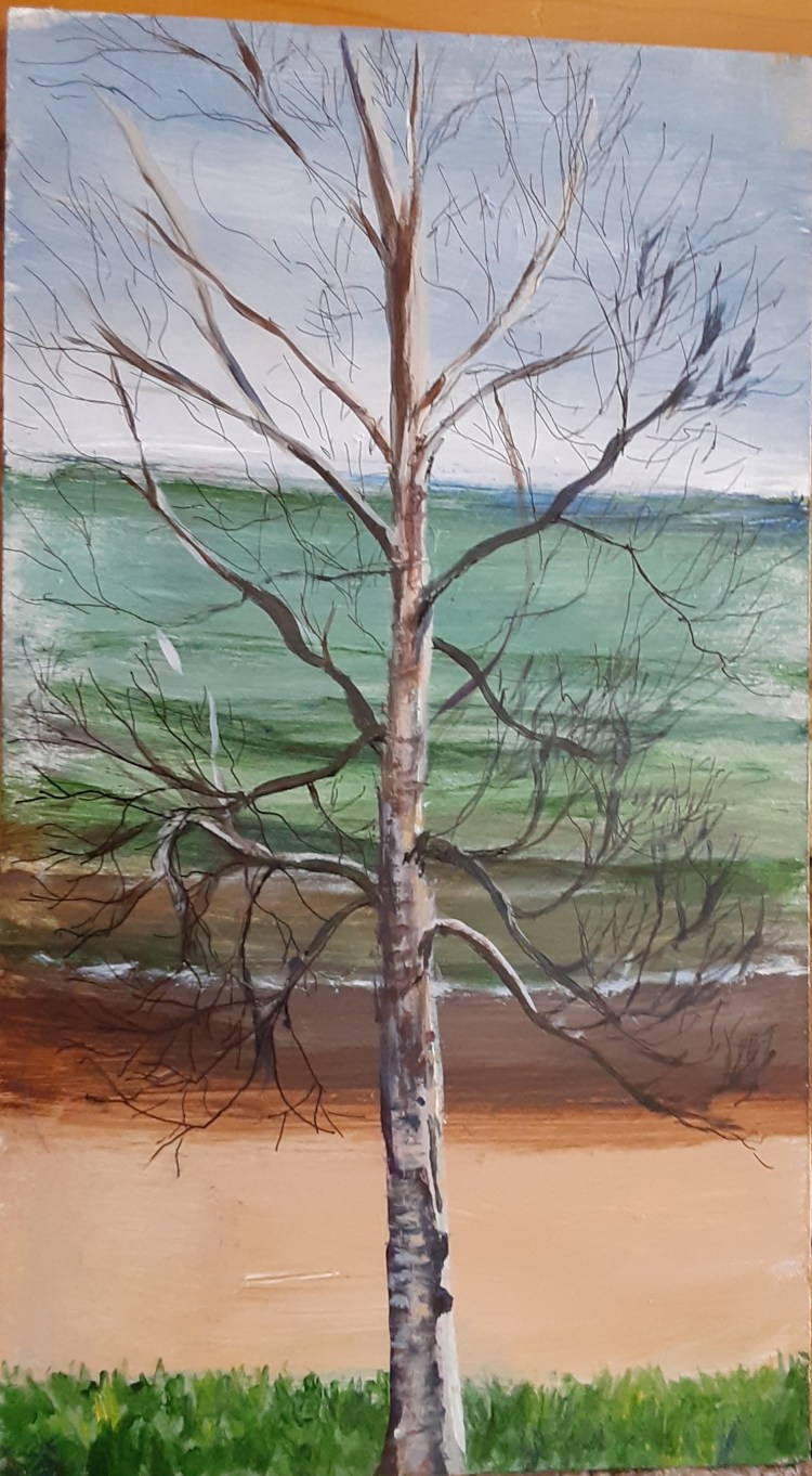 painting of a birch tree on Lake Huron in Northern Michigan