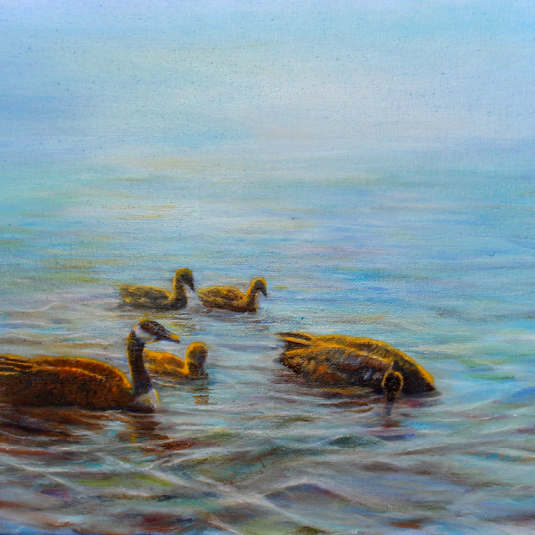Canandian Geese and 3 goslings on Lake Huron, oil painting
