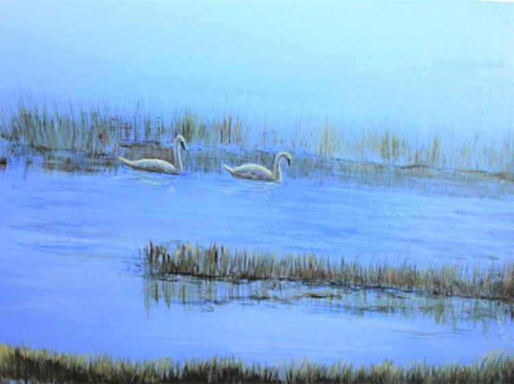 Tundra swans on Lake Huron, acrylic bird painting