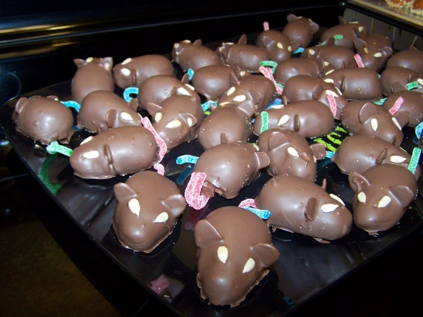 Chocolate Covered Rats (1/4)
