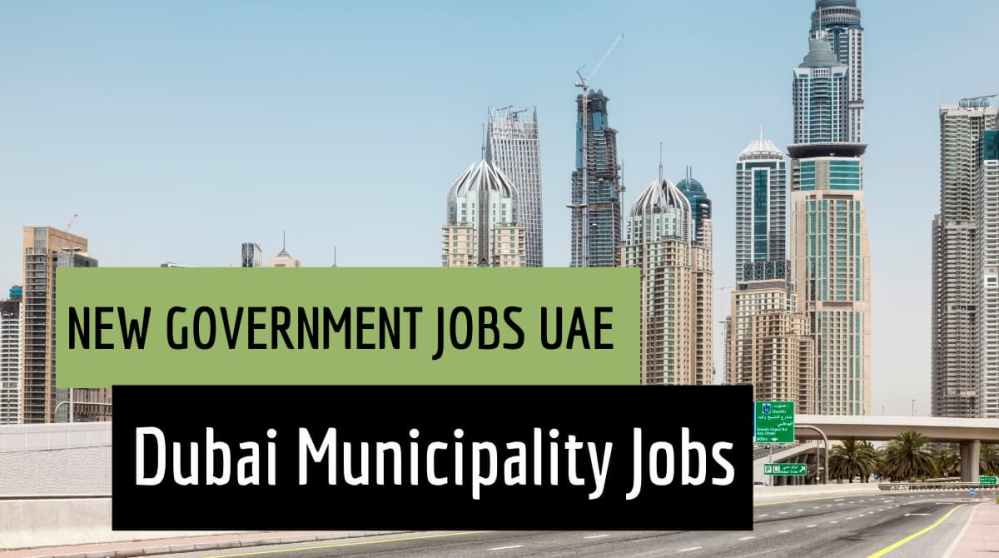 New Government Jobs UAE