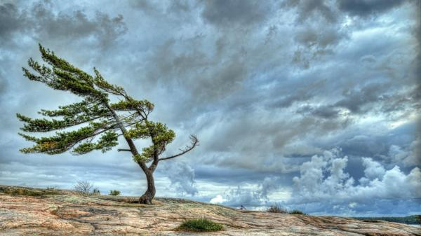 Wind Wallpapers High Quality | Download Free