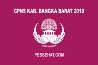 CPNS Kabupaten Bangka Barat 2018