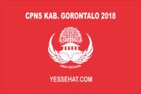 CPNS Kabupaten Gorontalo 2018